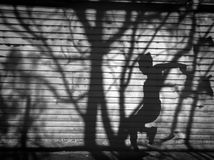 Twilight a man and tree shadow reflected on the wall. Twilight shadows. A man and tree shadow reflected on the wall. background Stock Images