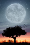 Twilight Moon Stock Photo