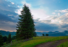 Twilight mountain meadow Royalty Free Stock Images