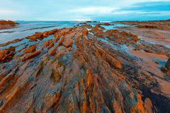 Twilight ocean coast with ribbed stratiform rock. Stock Image