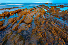 Twilight ocean coast with ribbed stratiform rock. Royalty Free Stock Photography