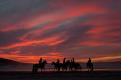 Twilight riders -Los jinetes del crepúsculo Royalty Free Stock Image