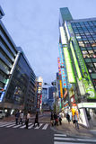Twilight shot of Akihabara shopping area Royalty Free Stock Image