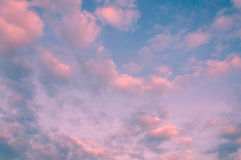Twilight sky. With a cloud Stock Images