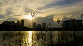 Twilight on the sky line at the city. Bangkok Thailand Royalty Free Stock Images