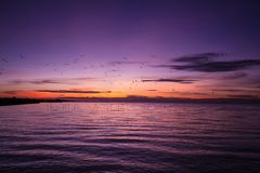 Twilight sky and silhouette of a seagull birds at sunrise,at sunset. Twilight sky and silhouette of a seagull birds at sunrise Stock Photo