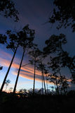 Twilight sky at Thung Non Son Royalty Free Stock Images