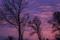 Twilight Sky. In winter, beautiful colors Royalty Free Stock Photography