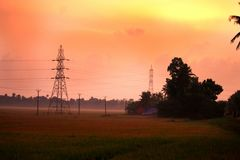 Twilight vibes. A beautiful click from the green fields of alappuzha Stock Photography