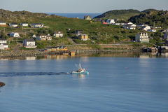 Twillingate渔船,安静的早晨 免版税库存照片