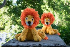 Twin amigurumi lions at sunset in the garden stock photography