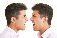 Twin argument Royalty Free Stock Images