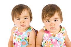 Twin babies Stock Image