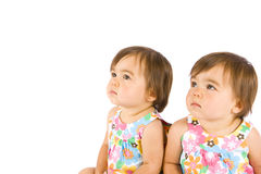 Twin babies. Cute baby twin sisters isolated on white Stock Photography