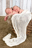 Twin baby basket Stock Photo