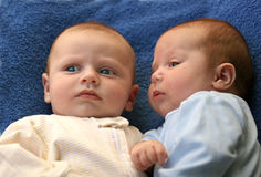 Twin baby boys. Two baby boys twin brothers Royalty Free Stock Images