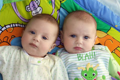 Twin baby boys Royalty Free Stock Photo