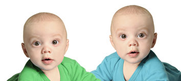 Twin baby boys in blue and green Royalty Free Stock Photography