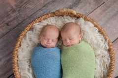 Twin Baby Boys Sleeping in a Basket. Four week old fraternal, twin baby boys swaddled in light blue and green wraps and sleeping in a wicker basket. Shot in the stock photo