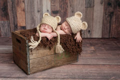 Twin Baby Boys Sleeping in a Wooden Crate. Four week old fraternal, twin, newborn baby boys wearing bear hats and sleeping in a vintage, wooden crate. Shot in Stock Image