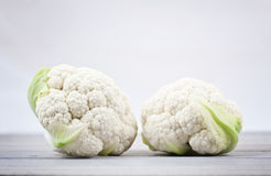 Twin baby cauliflowers Stock Images