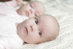 Twin baby girls Royalty Free Stock Images