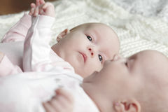 Twin baby girls Stock Image