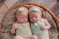 Twin Baby Girls Sleeping in a Wicker Basket. Seven week old fraternal, twin baby girls sleeping in a wicker basket. Shot in the studio on a rustic wood Stock Photos