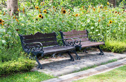 Twin bench Stock Images