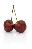 Twin black cherries Royalty Free Stock Photo
