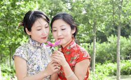 Twin born sisters and flower Stock Image