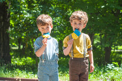 Twin boys with lollipops in hand Stock Photography