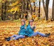 Twin boys in the park under falling maple leaves. Autumn royalty free stock image