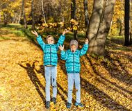 Twin boys in the park under falling maple leaves. Autumn royalty free stock photos