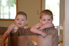 Twin boys Royalty Free Stock Images