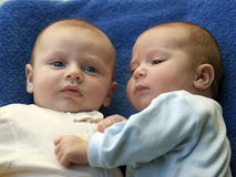 Twin brothers. Two baby boys twin brothers Stock Image