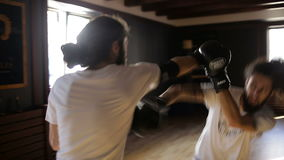 The twin brothers in boxing gloves sparring in the training hall. Chinese martial arts. Wushu. Wudan stock video