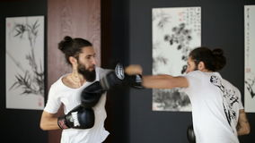 The twin brothers in boxing gloves sparring in the training hall. Chinese martial arts. Wushu. Wudan stock video footage