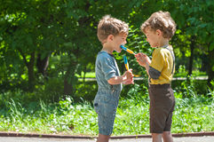 Twin brothers eat lollipops in the park Royalty Free Stock Photography