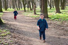 Twin brothers on a forest road. Four year old identical twin boys running through the forest road. Season - spring Stock Image