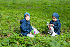 Twin brothers in the meadow. Four year old identical twin boys in the meadow. They are squatting in the lush grass. Boys hold toy guns. They are dressed in Stock Photography