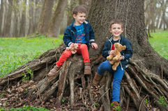 Twin brothers play in the forest. Four year old identical twin brothers sit on the roots of a large tree. They are holding a toy puppies. Season - spring Royalty Free Stock Images