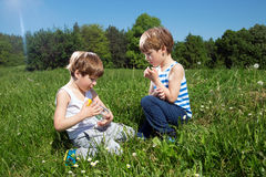 Twin Brothers Playing With Butterfly In The Glass Jar While Sitting On Green Field Enjoying Sunny Spring Day Royalty Free Stock Photos