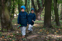 Twin brothers strolling in the woods Stock Photo