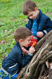 Twin brothers study the nature. Four year old identical twin brothers study the tree roots with magnifying glass. Season - spring Royalty Free Stock Images