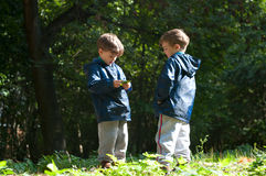 Twin brothers in the woods. Four year old identical twin boys in the forest. They're looking at the leaf in hands. They are dressed in windbreakers and Stock Images