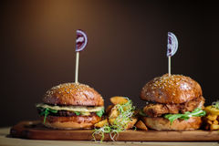 Twin Burgers Royalty Free Stock Photos