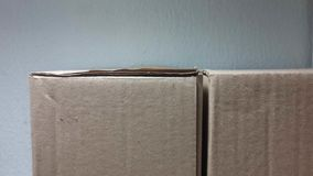 Twin cardboard boxes Royalty Free Stock Photos