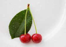 Twin cherries Royalty Free Stock Image