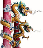 Twin Chinese Dragon Stock Photography